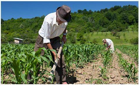 25 de Maio: Dia do Trabalhador Rural