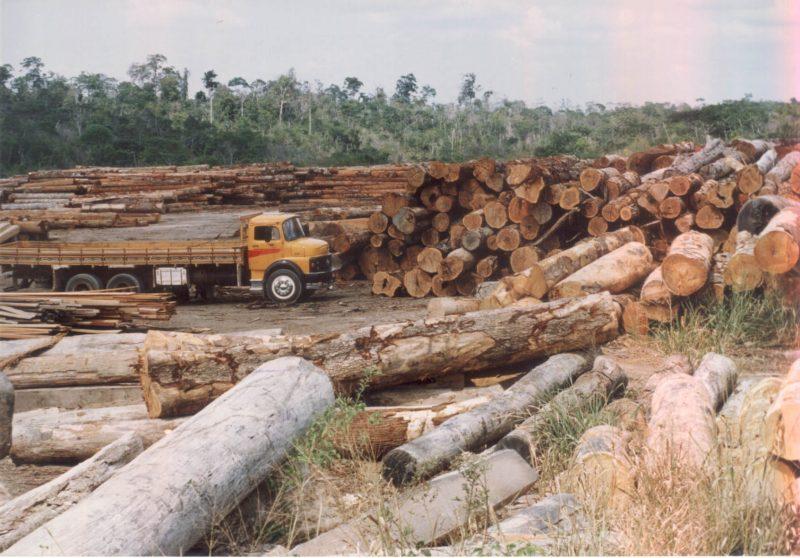 Revogação de Lei da Madeira é tema de reunião do Sintap na Promotoria de Meio Ambiente