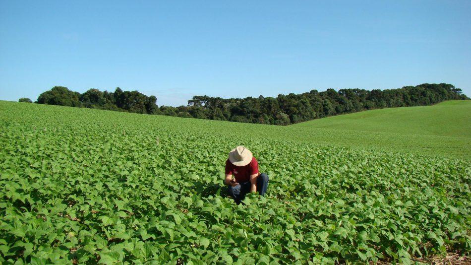 Trabalhadores rurais do Amazonas reivindicam entrega de títulos de terra do governo federal