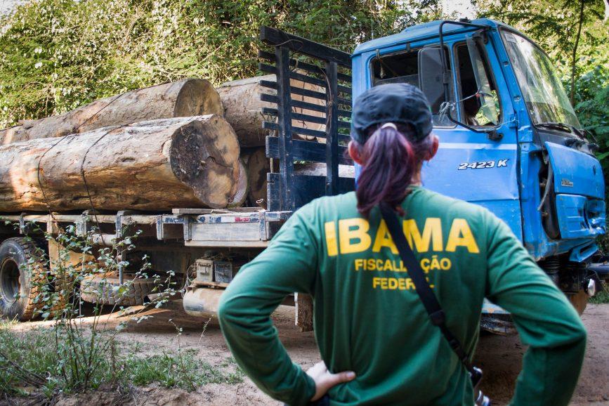 Ibama tem déficit de 2.151 servidores e dificuldade para cumprir funções