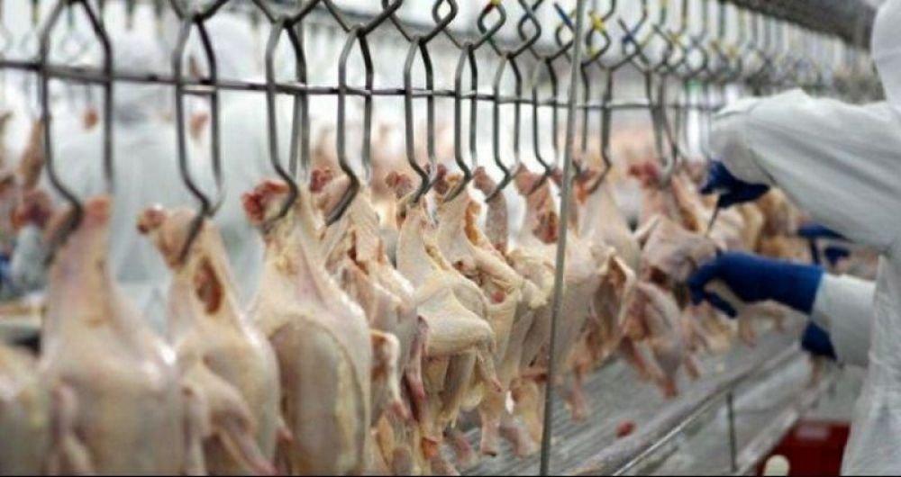 Arábia Saudita suspende importação de carne de frango de 33 frigoríficos do Brasil