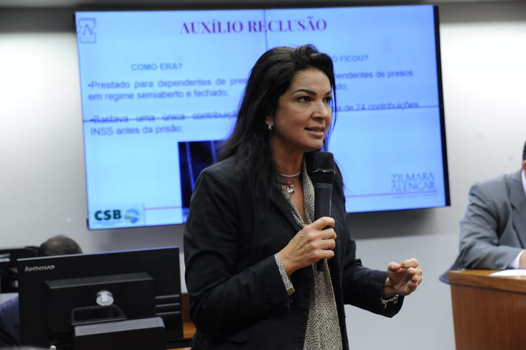 Zilmara Alencar aponta as inconstitucionalidades das MPs 871 e 873